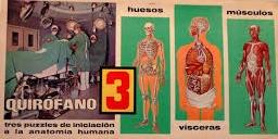 Las láminas y puzzles de anatomía fueron una de las referencias más populares de la empresa catalana